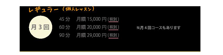 レギュラー(個人レッスン)
